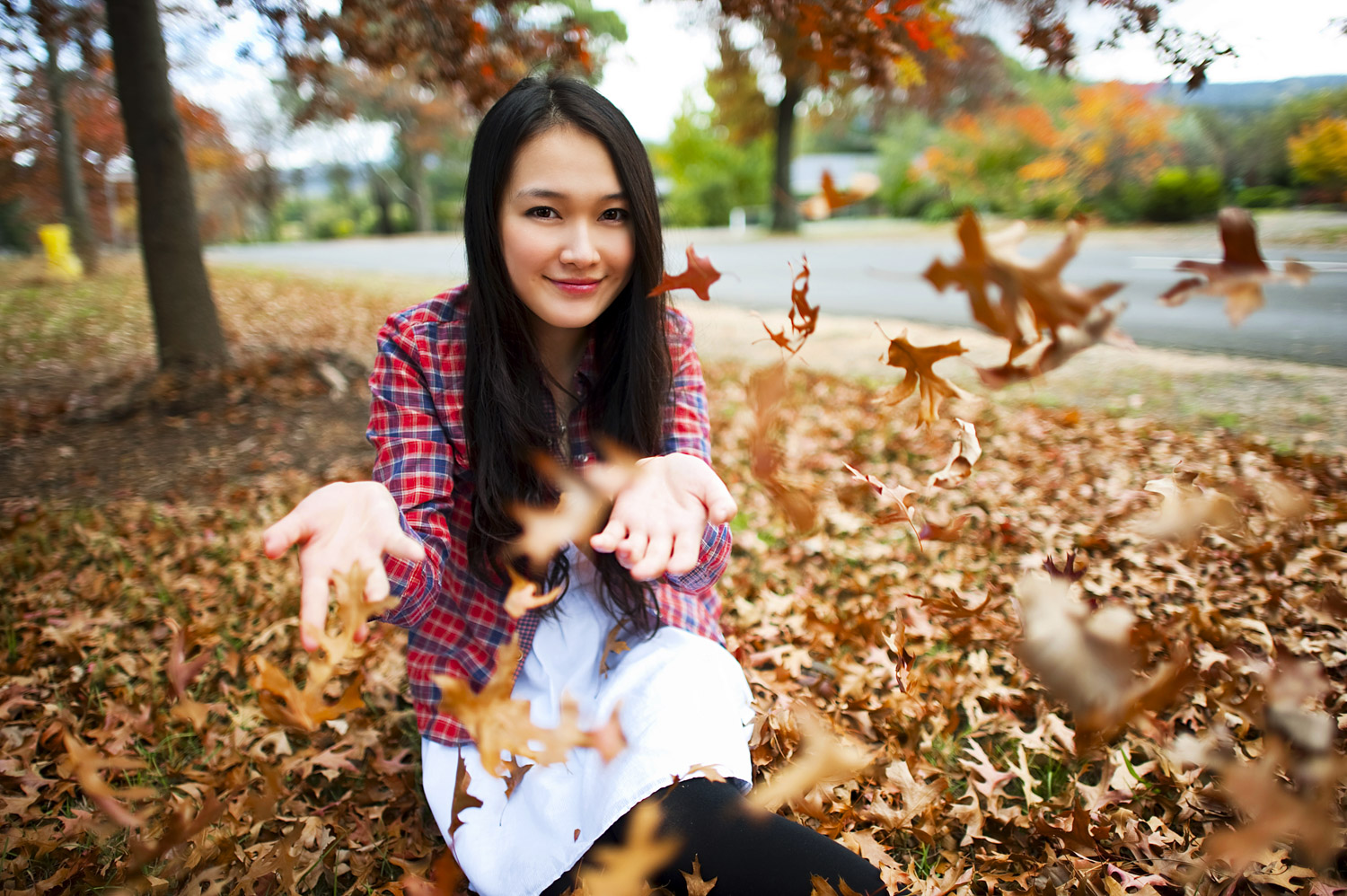 Sun (Visitor) - The red autumn leaves symbolise joy and good fortune