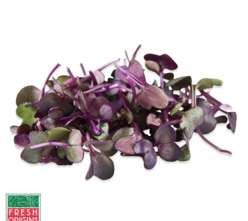 Sango Purple Radish -