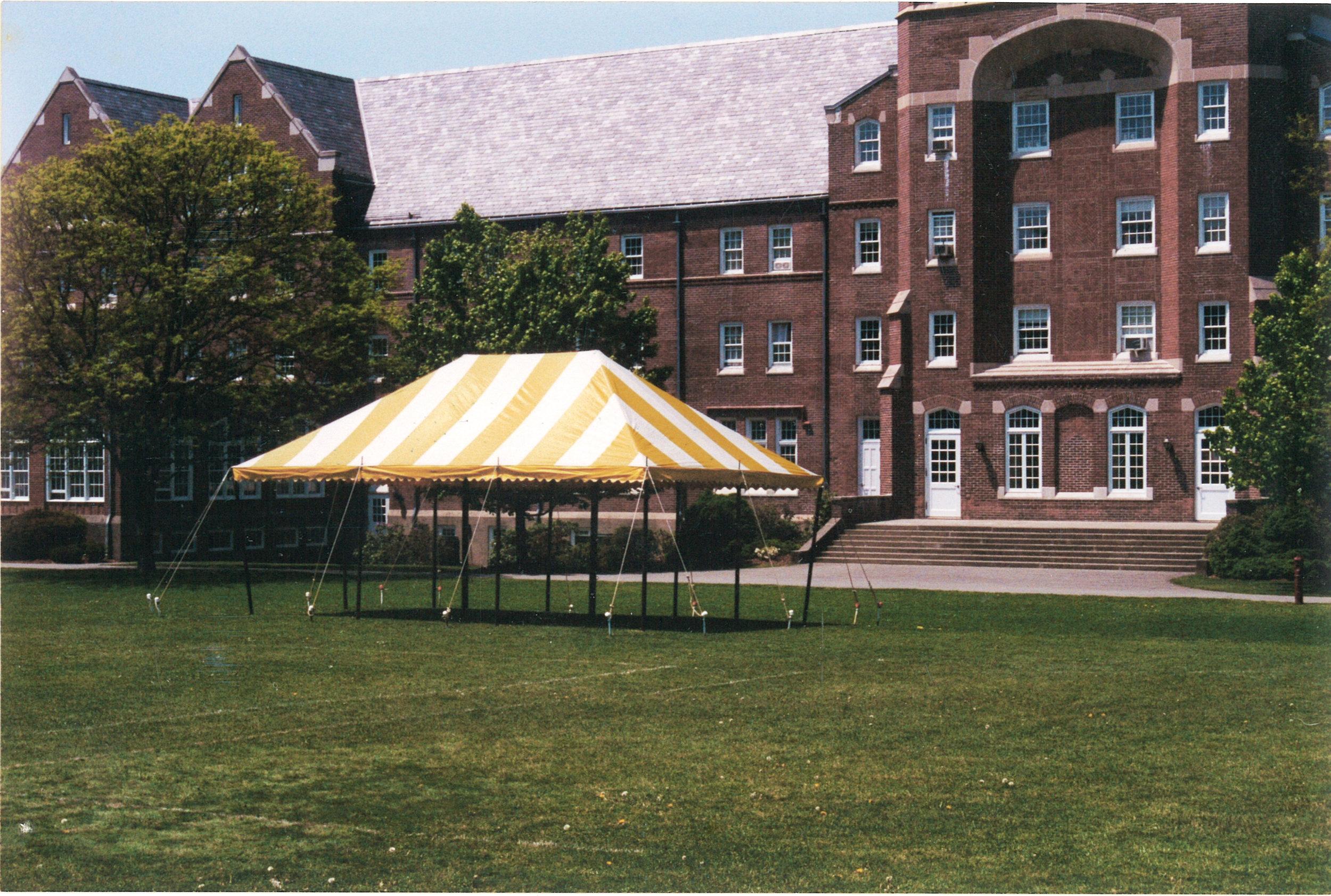 M10340 Yellow tent scan.jpg