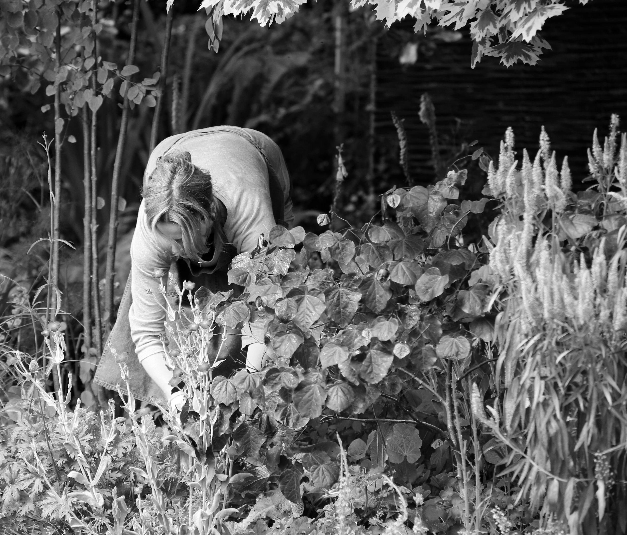 Elspeth in her garden.jpg