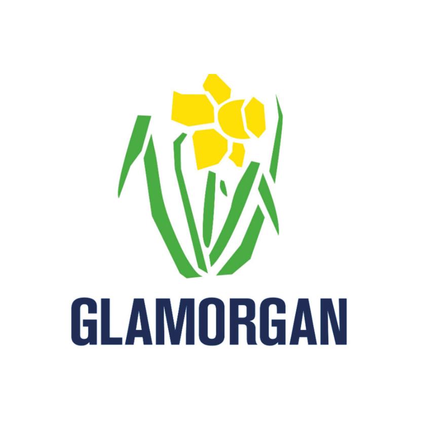 Glamorgan cricket.png
