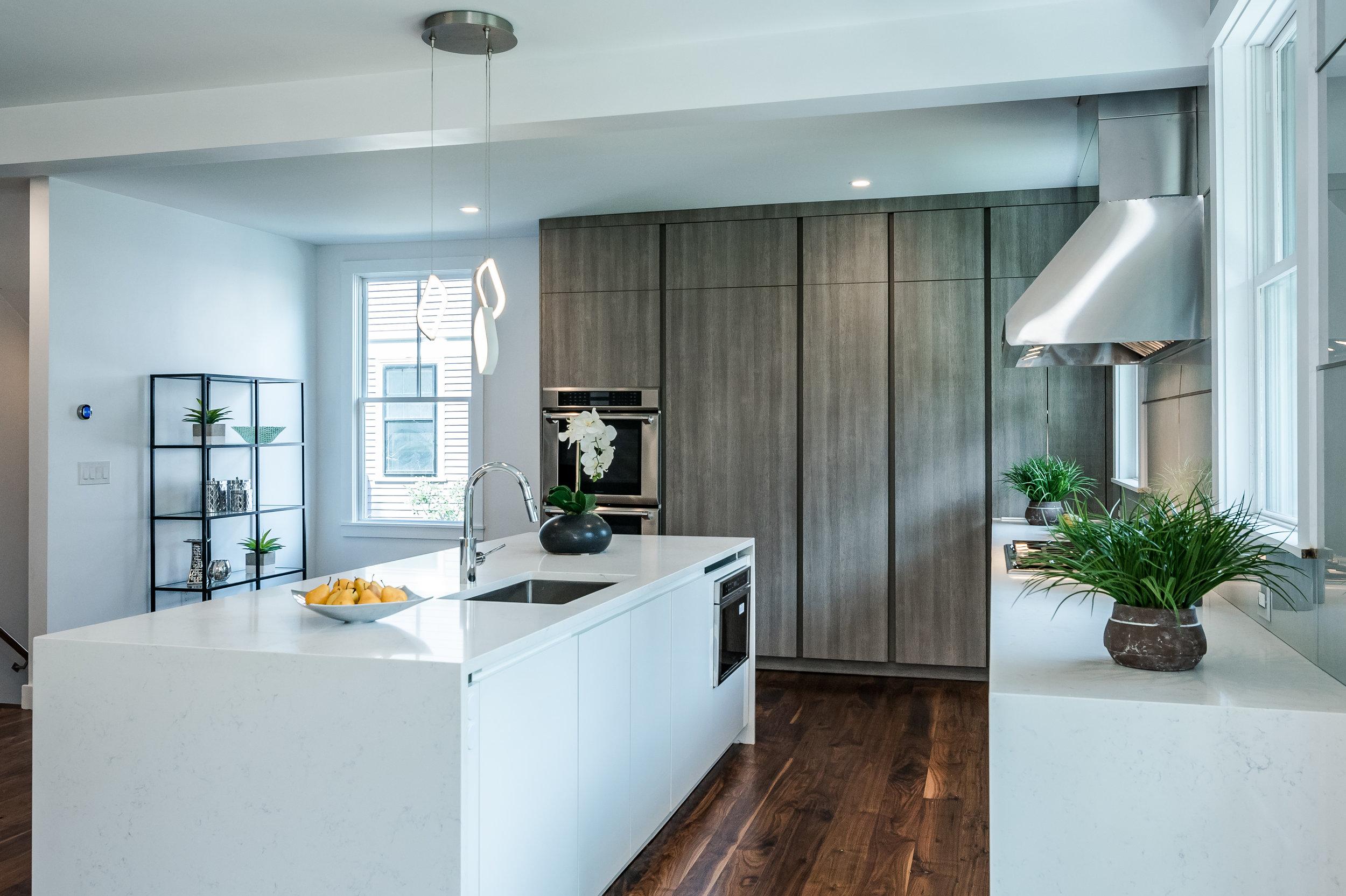 brookline-contemporary-kitchen-dutch-colonial (6).jpg