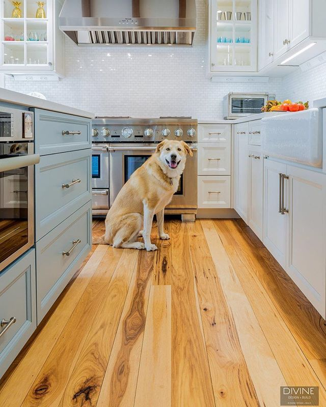 With this #CharlestownMA kitchen we were able to make all members of the family feel right at home ... even the 4-legged ones!⠀ .⠀ .⠀ .⠀ #designblog #designer #designporn #designideas #decoration #decorating #moderndecor #homedecor #livingroom #livingroomdecor #livingthedream #lifestyle #lifestyleblogger #bostondesigner #bostonblogger #interior #instahome #instacool #interiuer #interior123 #interioinspo #luxurylifestyle #luxuryblogger #luxurydesign #luxuryhomes #blackandwhite