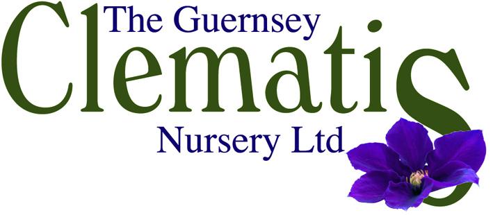The Guernsey Clematis - Logo.jpg
