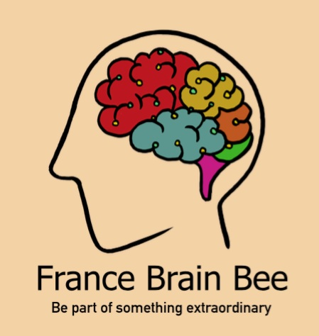 France brain bee - The France Brain Bee is our latest initiative. We've established an affiliate of the International Brain Bee, a neuroscience competition for students in 9th-12th grade (3ème-Terminale). Gifted in France has recently partnered with ICM (The Brain & Spine Institute - or L'Institut du Cerveau et de la Moelle épinière). ICM are the official hosts and sponsor of the April 2019 event in collaboration with GiF.