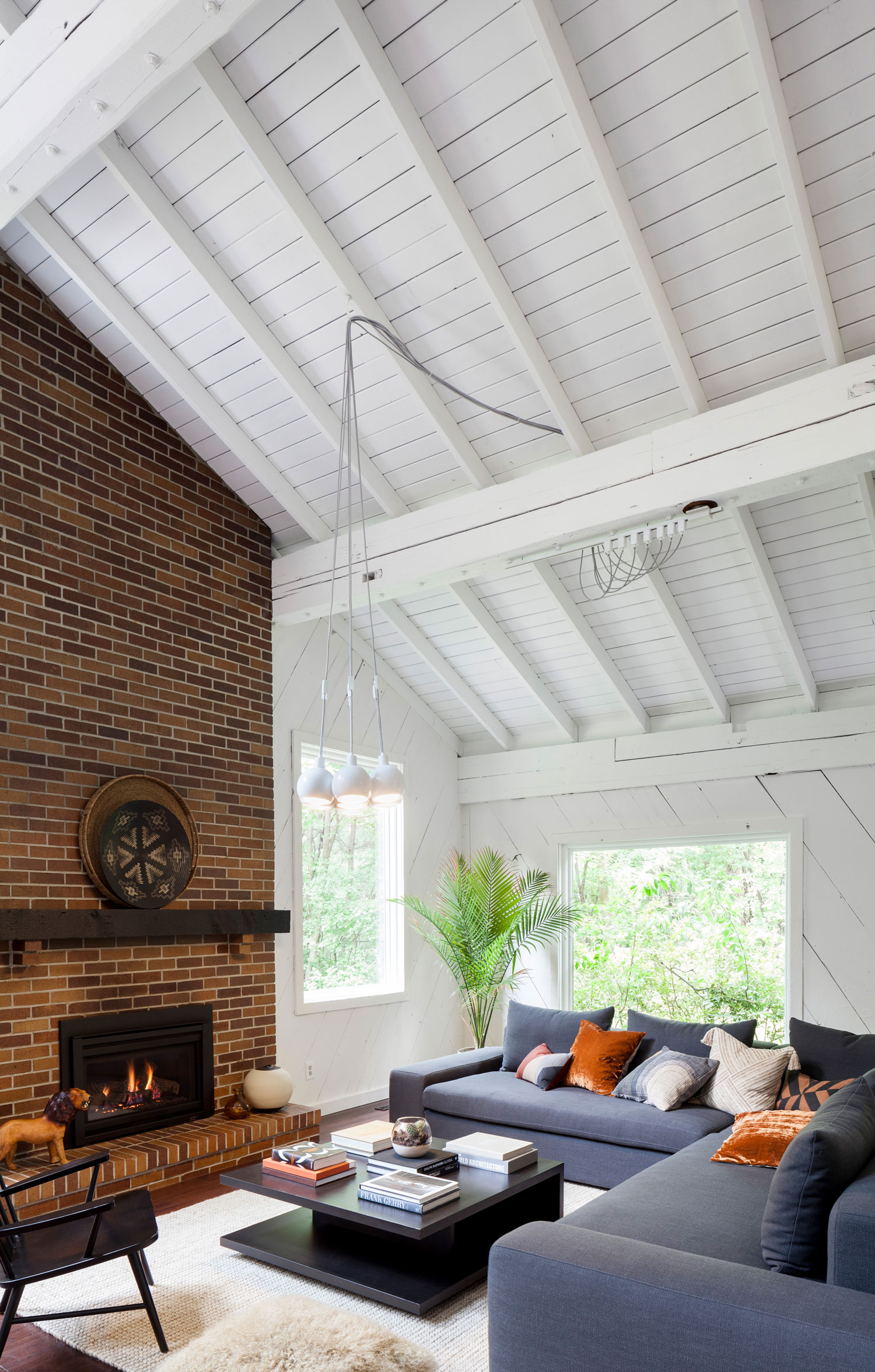 minneapolis-st-paul-home-decor-interior-designer-interior-stylist-interior-design-10.jpg
