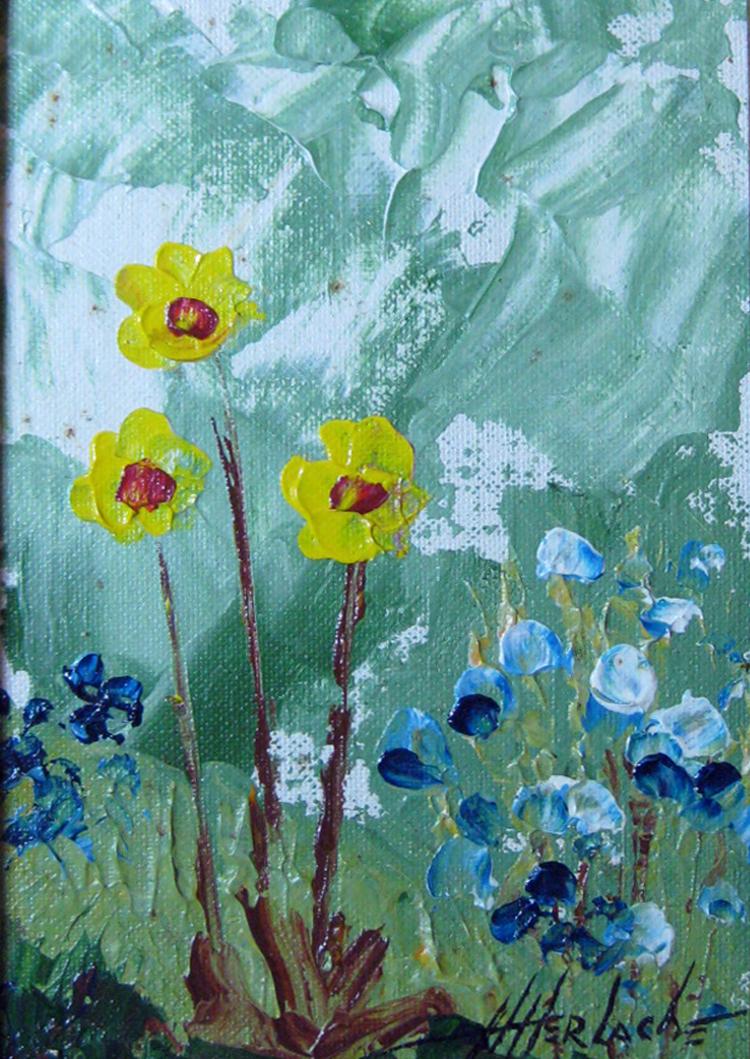 Herlache, Henry - Floral 44