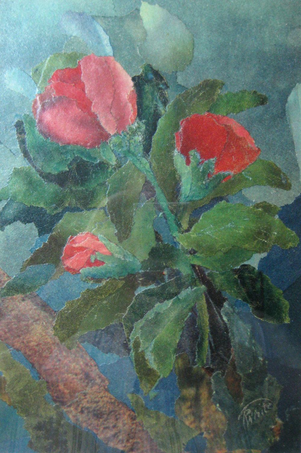 White, Arthur - Roses