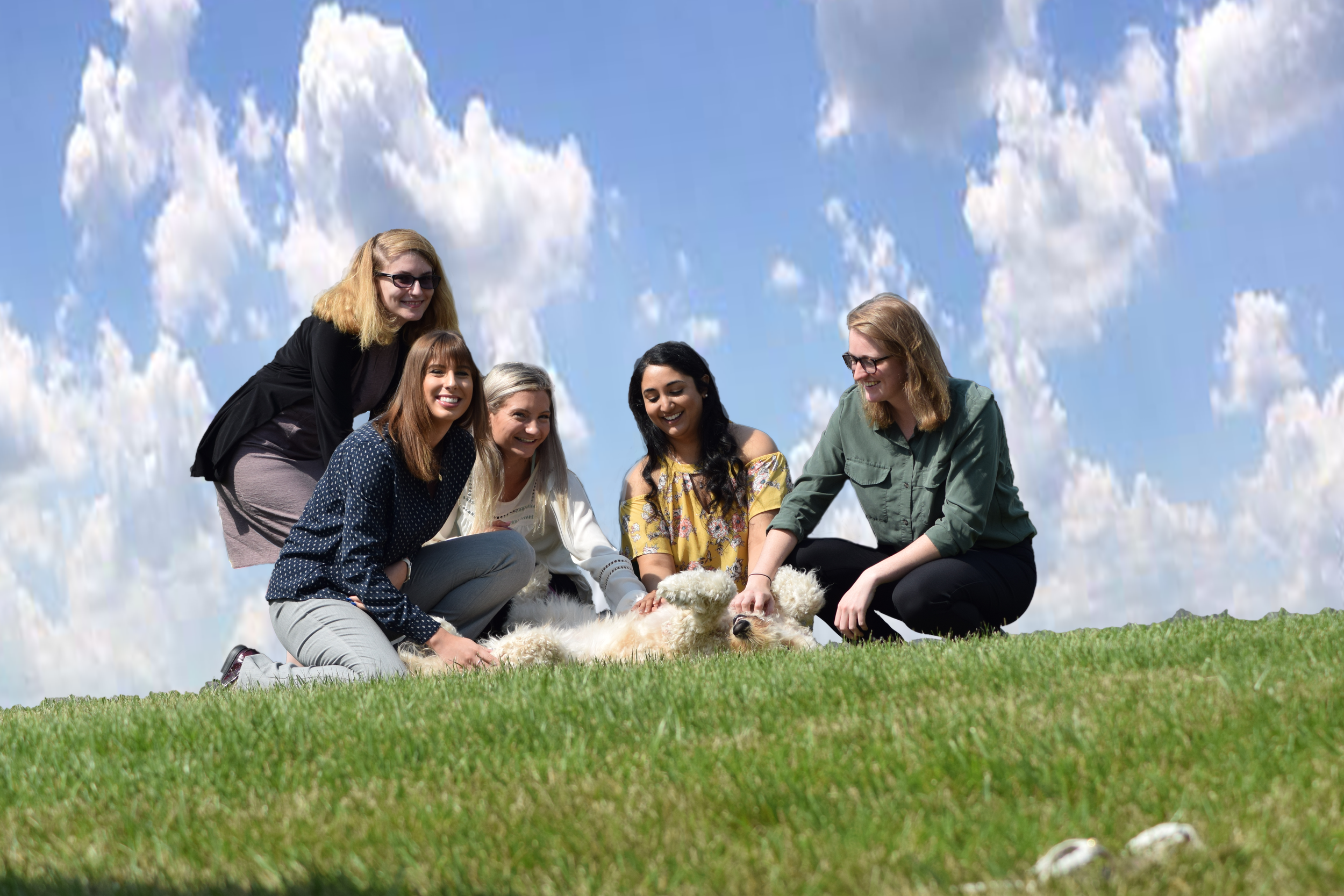 Summer interns 2019