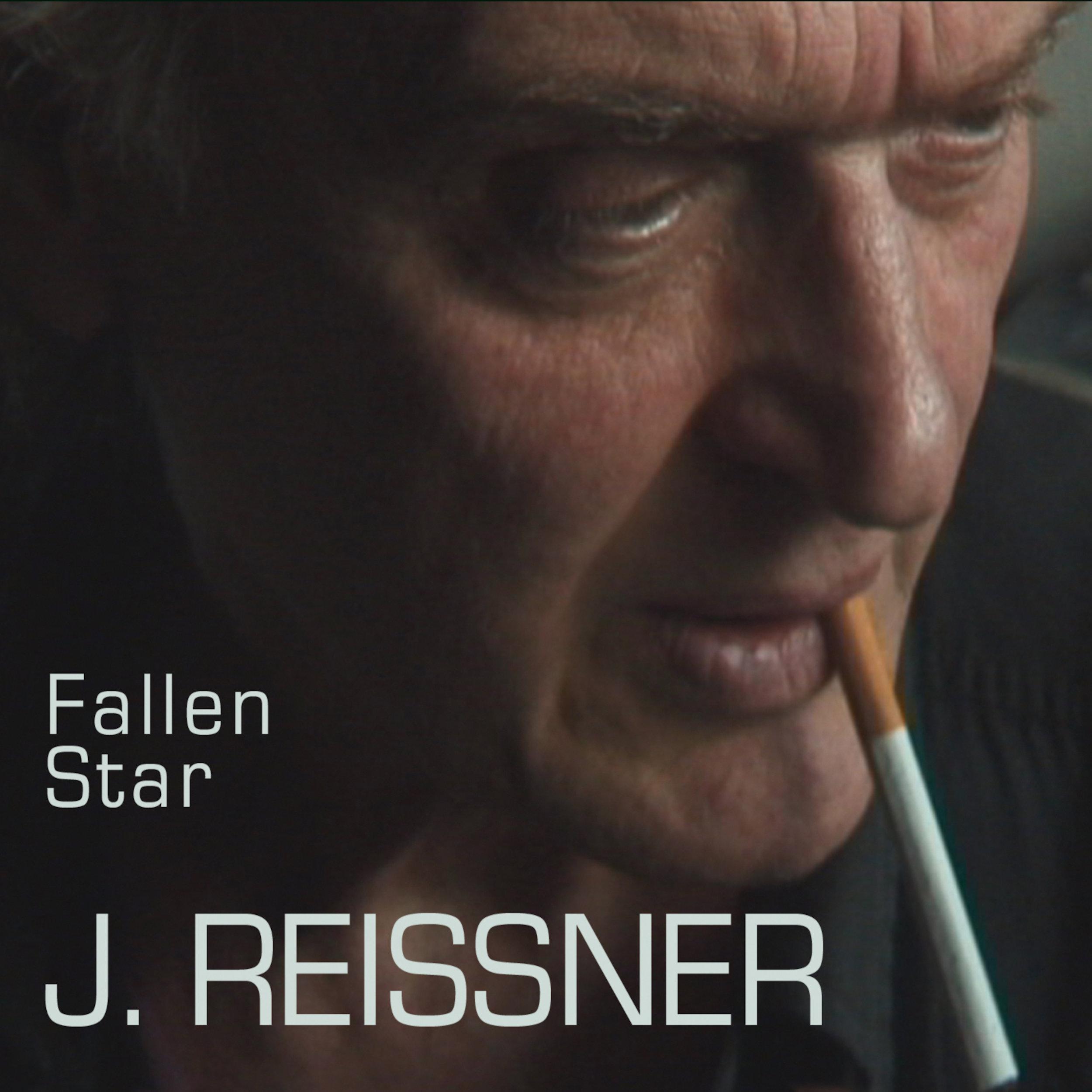 Fallen Star J. Reissner 3kx3k 300.jpg