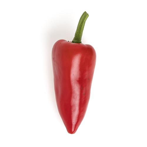 Red Fresno_1.jpg