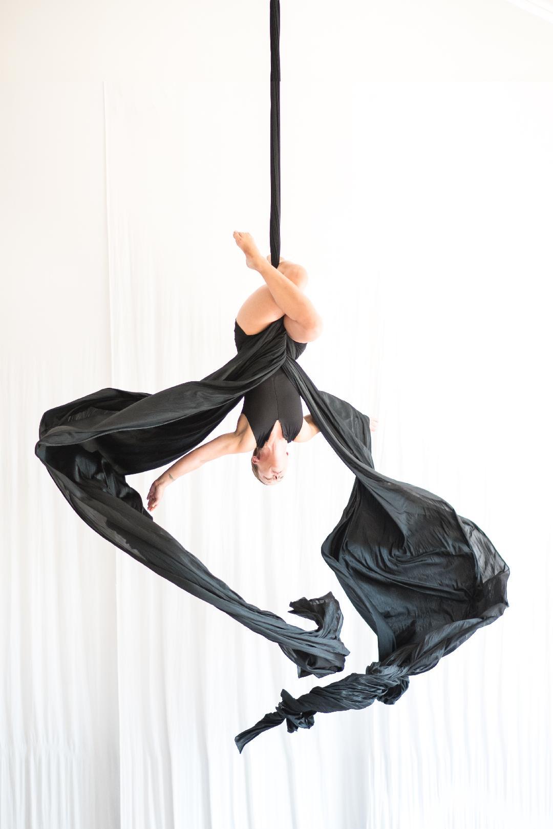Aerial Dance Chicago cr Michelle Reid.jpeg