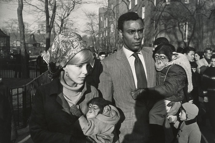 Garry Winogrand - Central Park Zoo, New York, 1967 - Collection of Randi and Bob Fisher. © The Estate of Garry Winogrand, courtesy Fraenkel Gallery, San Francisco