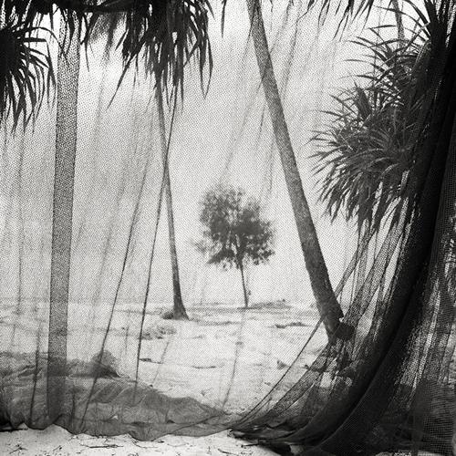© Joseph Hoflehner – Untitled #27 - Zanzibar, Tanzania