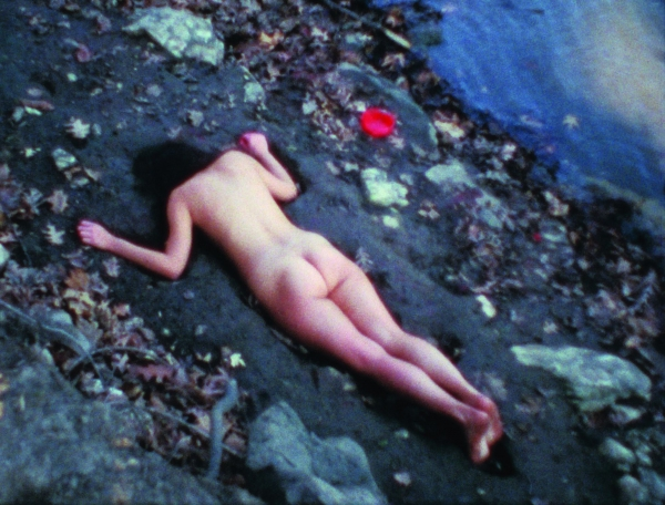 Anna Mendieta_Radical_Women_Latin_American_Art_1960_1985.jpg