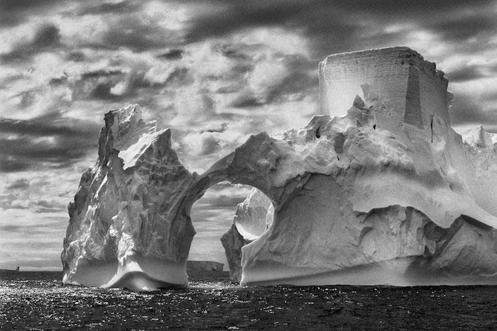 THE SALT OF THE EARTH_Film Still.jpg