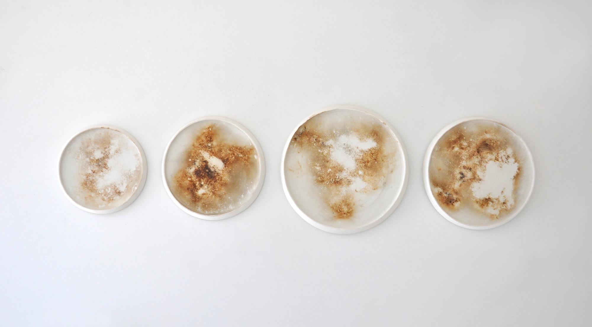 Lindsey Dezman,  Dust Plates,  2017, porcelain, burnt out dust, dimensions variable