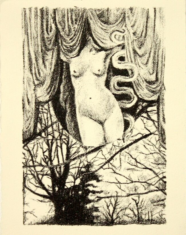 Colette Mihocik,  In The Garden , 2015, Lithography on paper