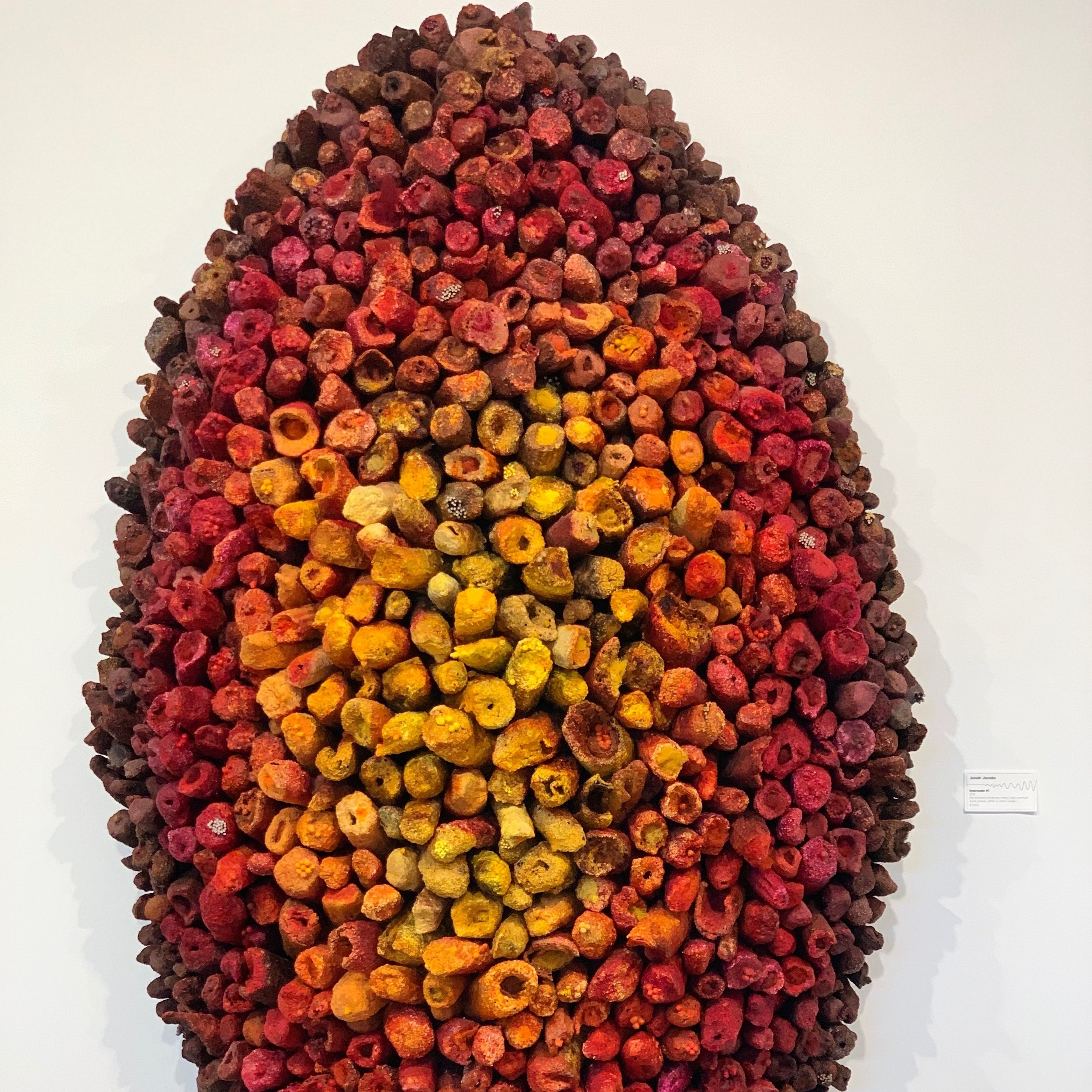 Jonah Jacobs,  Internode #1 , 2018, fire sculpted cardboard, paint, dye, oatmeal, sand, plaster, glitter, and cotton swabs, $2000