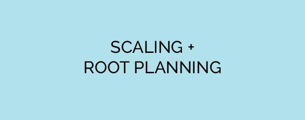 SCALING ROOT PLANNING.jpg