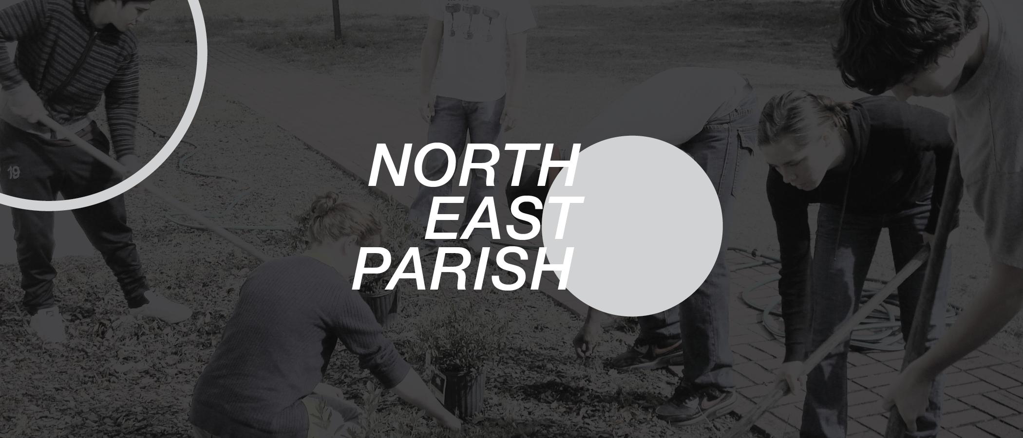 northeast-01.png