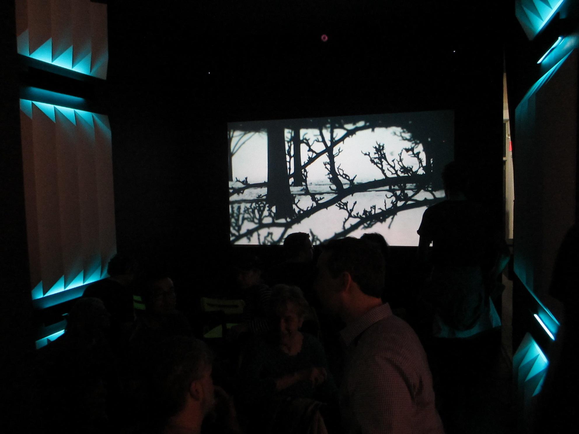Chamber screen 2.JPG