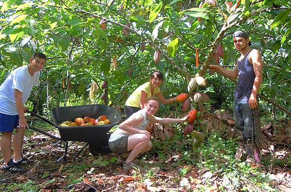 Day 6: Head to the Finca Kobo Organic Farm to learn about chocolate and other plants