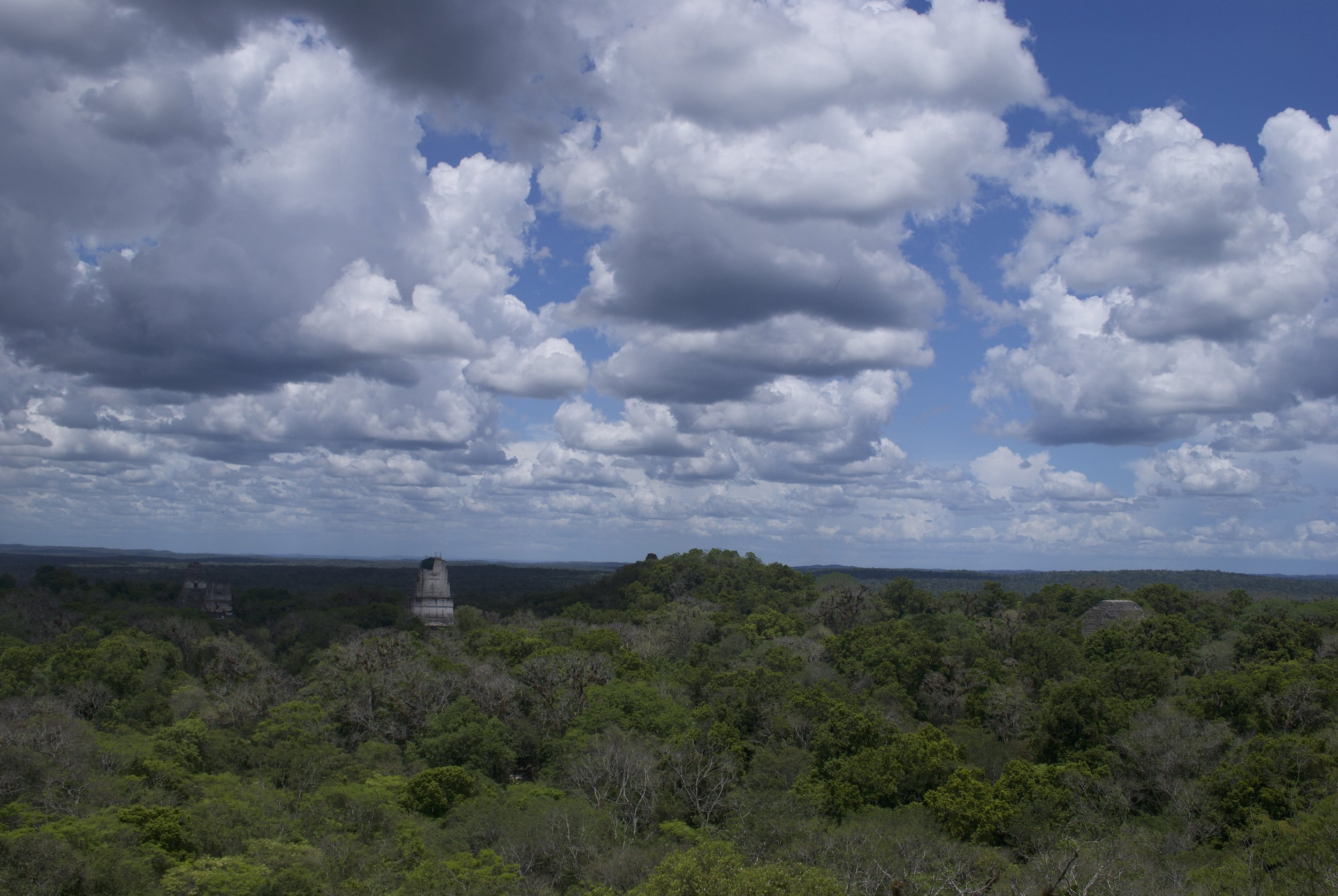 Spend all day at Tikal, having a picnic lunch and climbing to the top of the temples for a great view