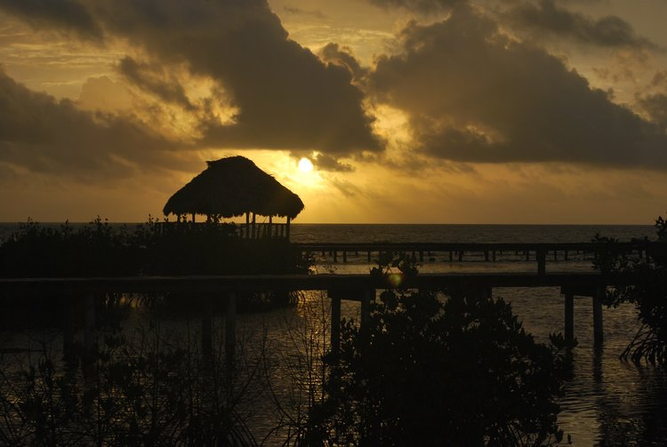 Day 6: Head back to Belize City and transfer to the airport or join the extension to Tikal