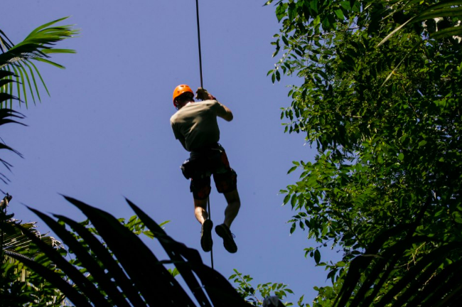 After a picnic lunch, explore the rainforest canopy by zipline
