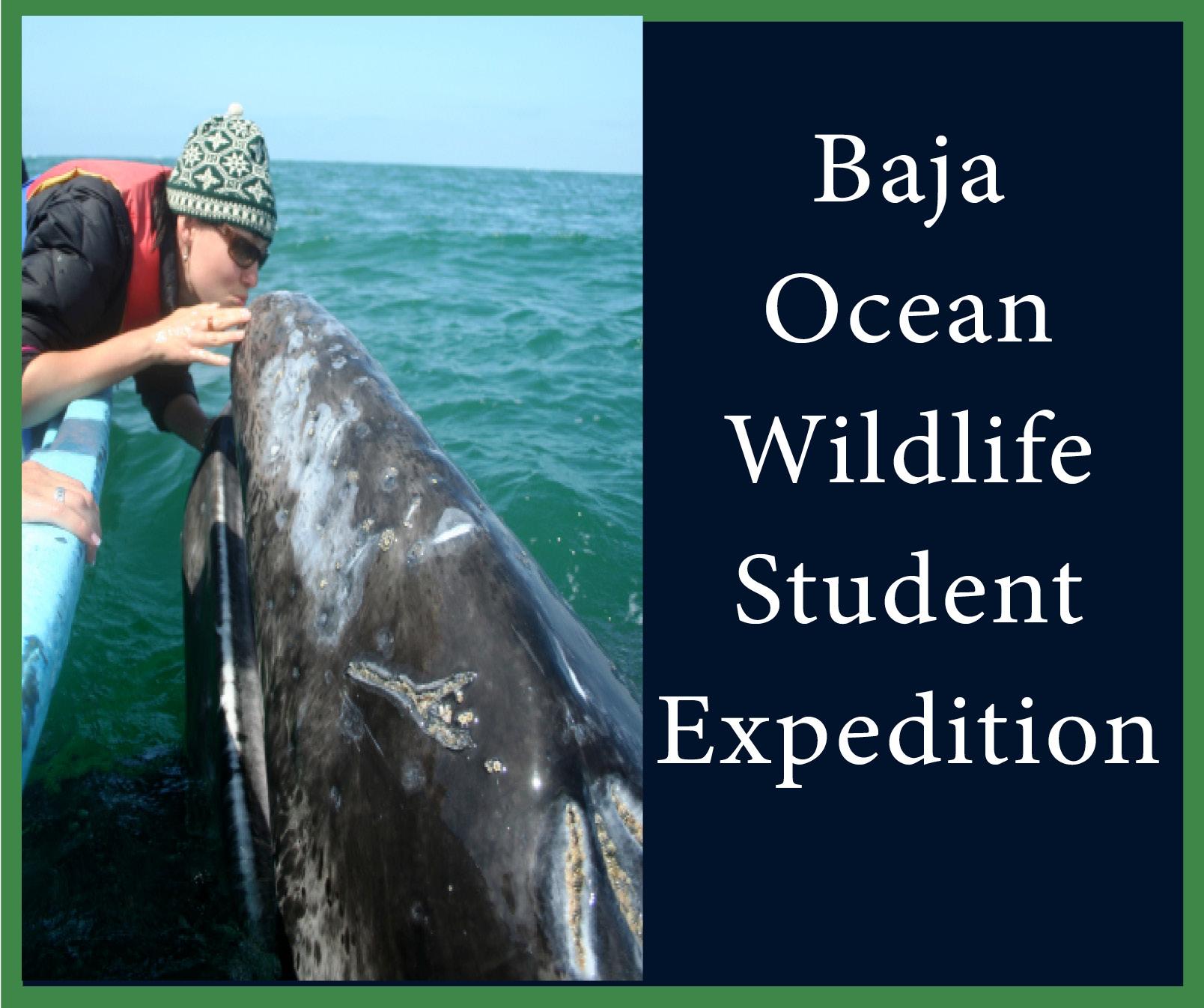 Baja ocean students.jpg
