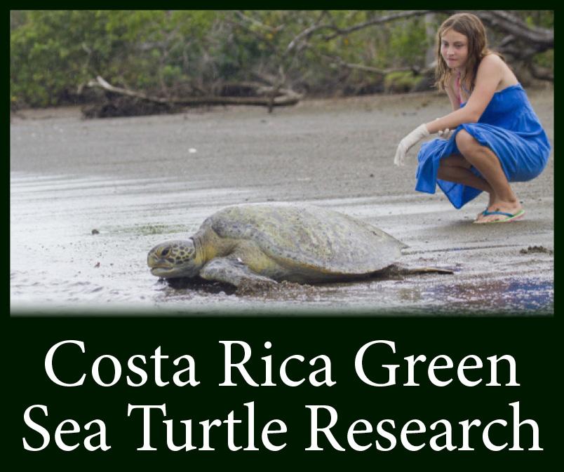 Costa Rica Green Button no logo.jpg