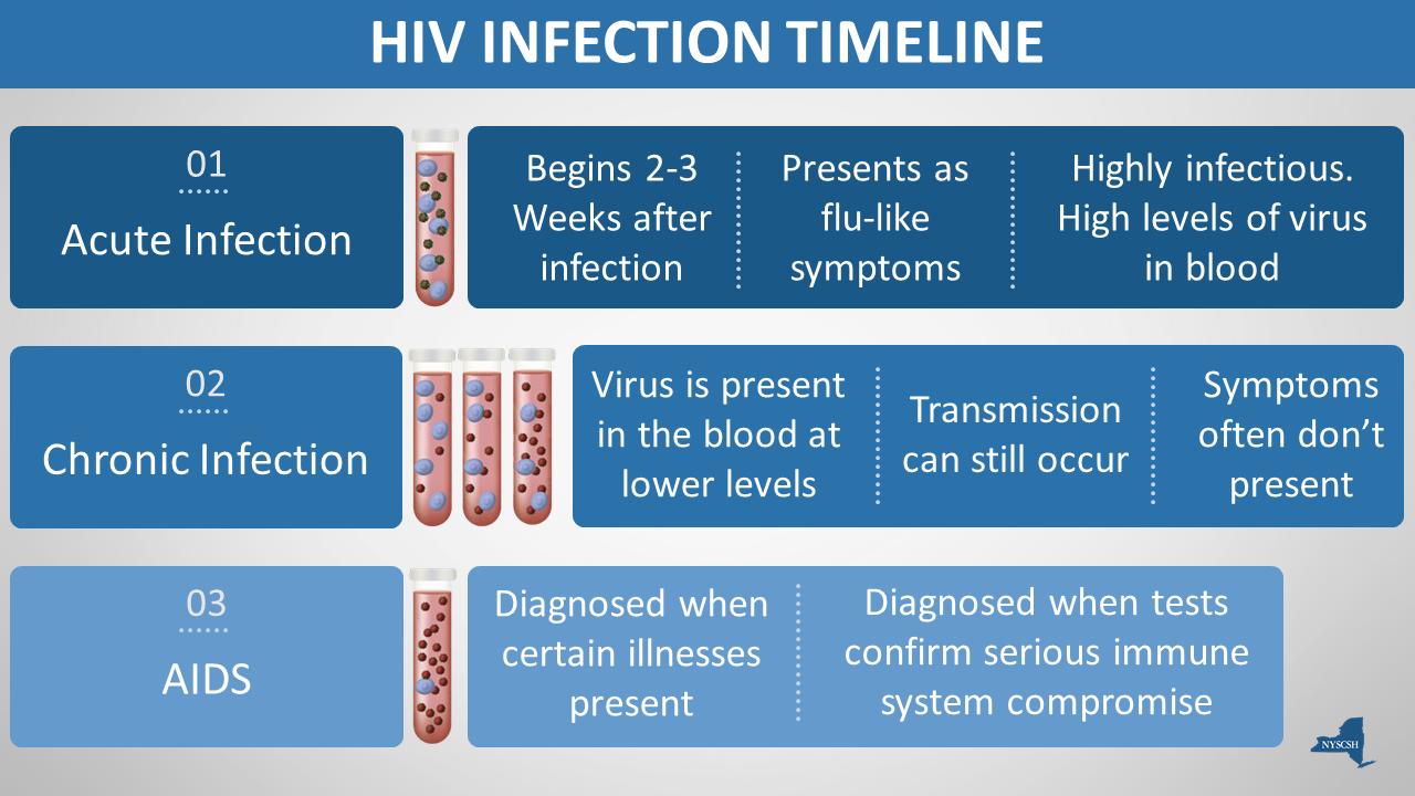 HIV Update.png