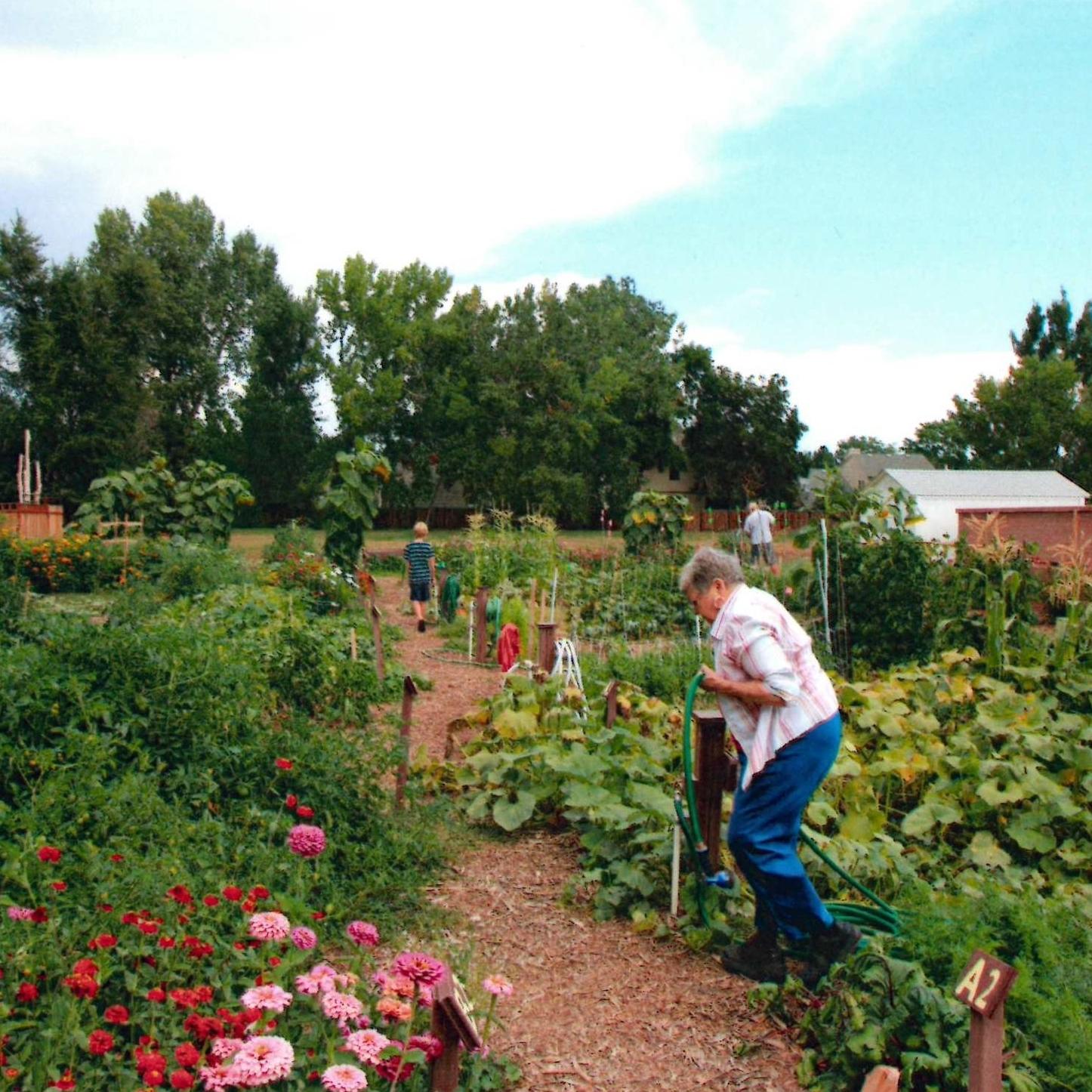 garden alana (2).jpg