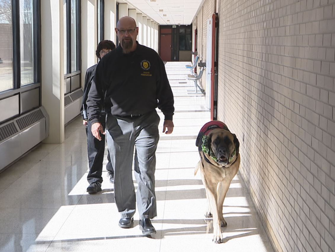 Lake County Juvenile Court Senior Judge Thomas P. Stefaniak walks the halls of the Juvenile Center with family pet Moxie.