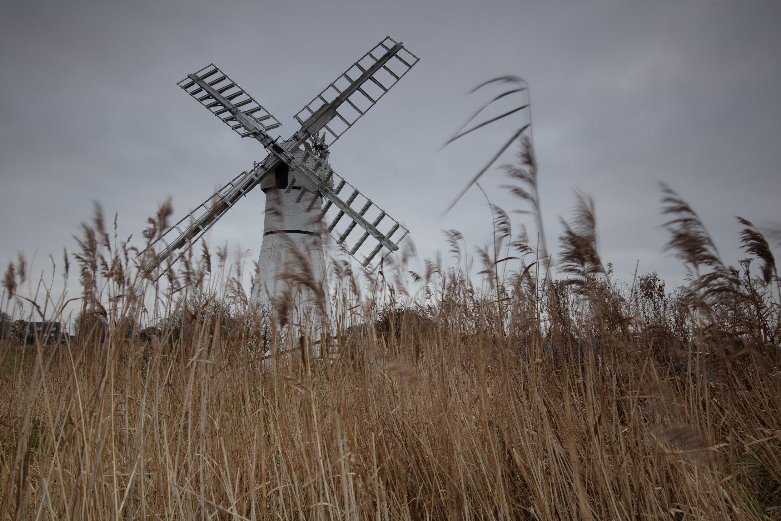 Simply Thrune, Thurne Mill, Norfolk.