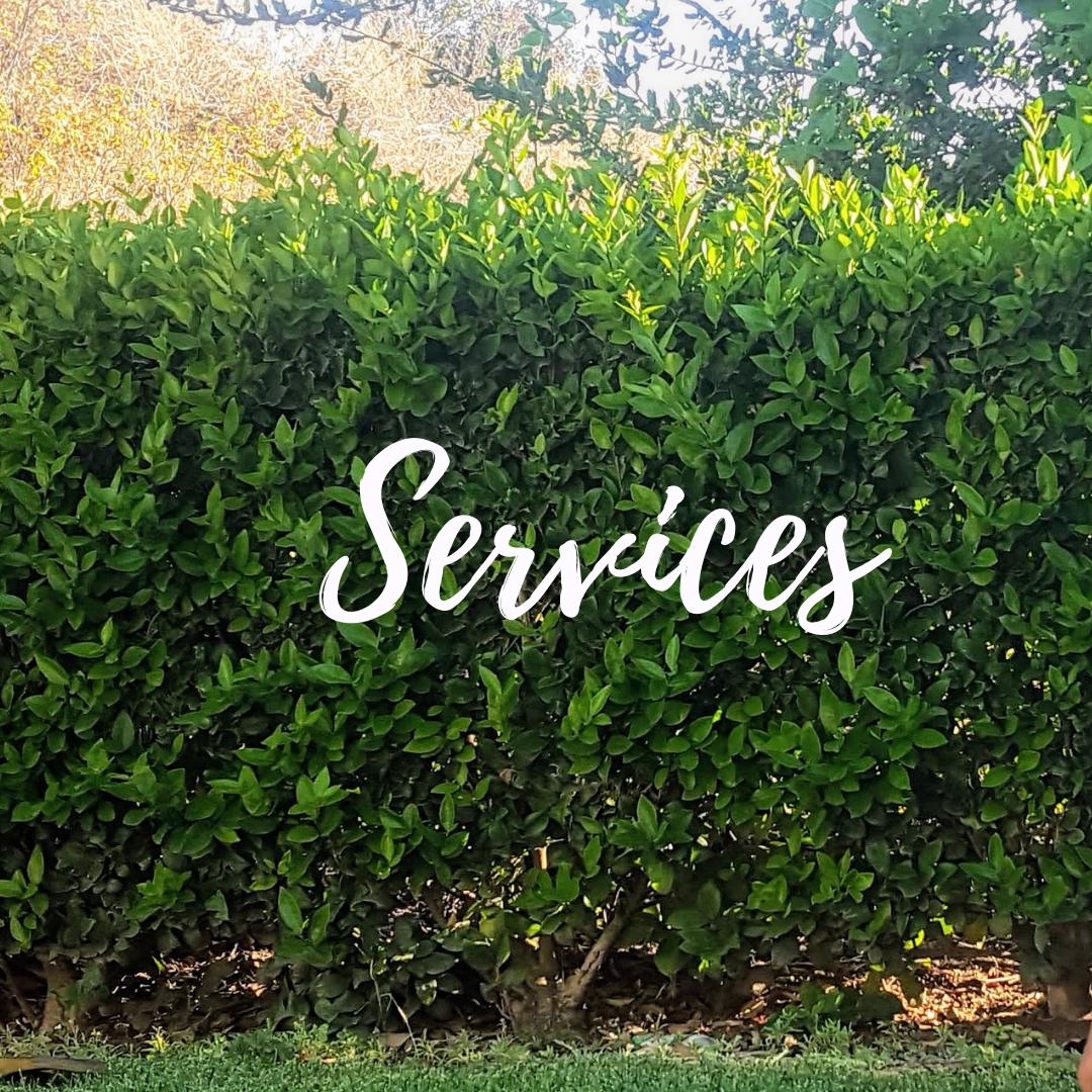 Voice-A-Dream-Services.png