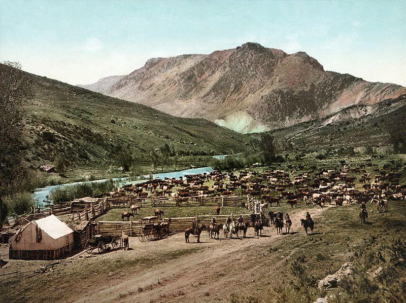 1898: Colorado. Rassemblement. Source : https://www.vintag.es