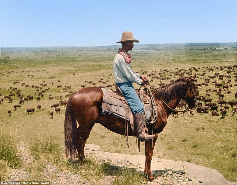 1907: LS Ranch, Texas. Homme sur une colline surplombant le pâturage. Source : https://www.vintag.es