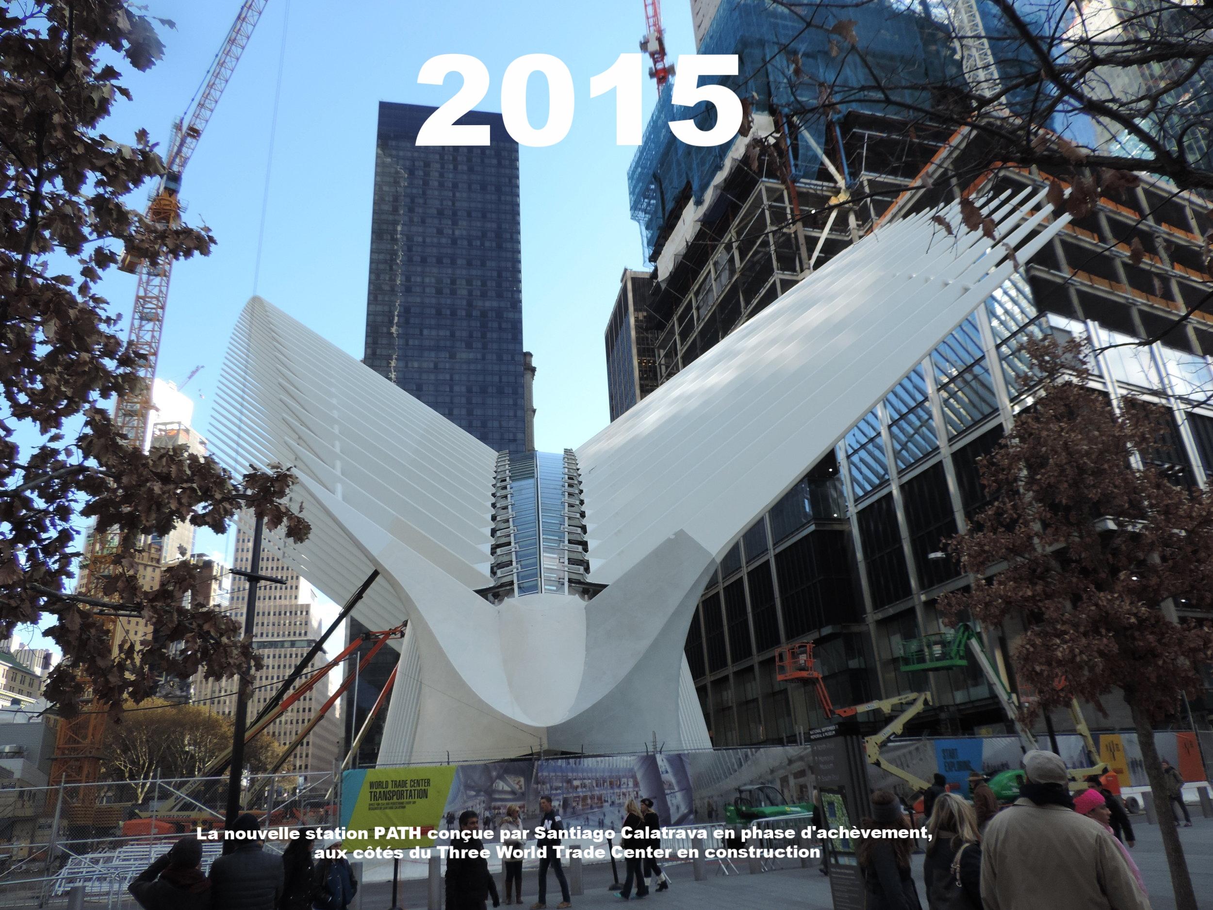 WTC_hub_bird_2015-11_jeh.jpeg