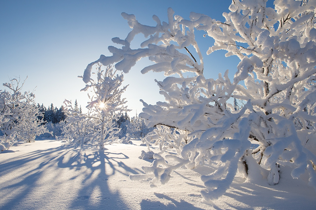 Canada_Winter_Kakisa_459926.jpg