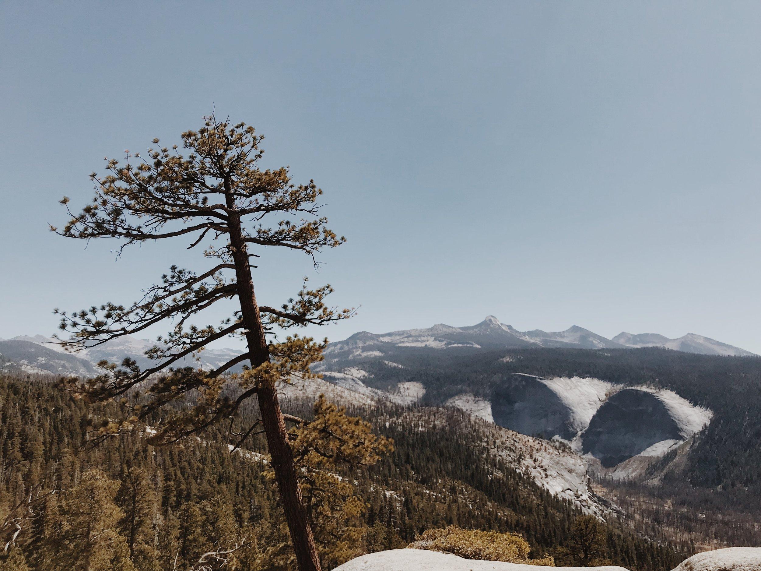 hikinghalfdome