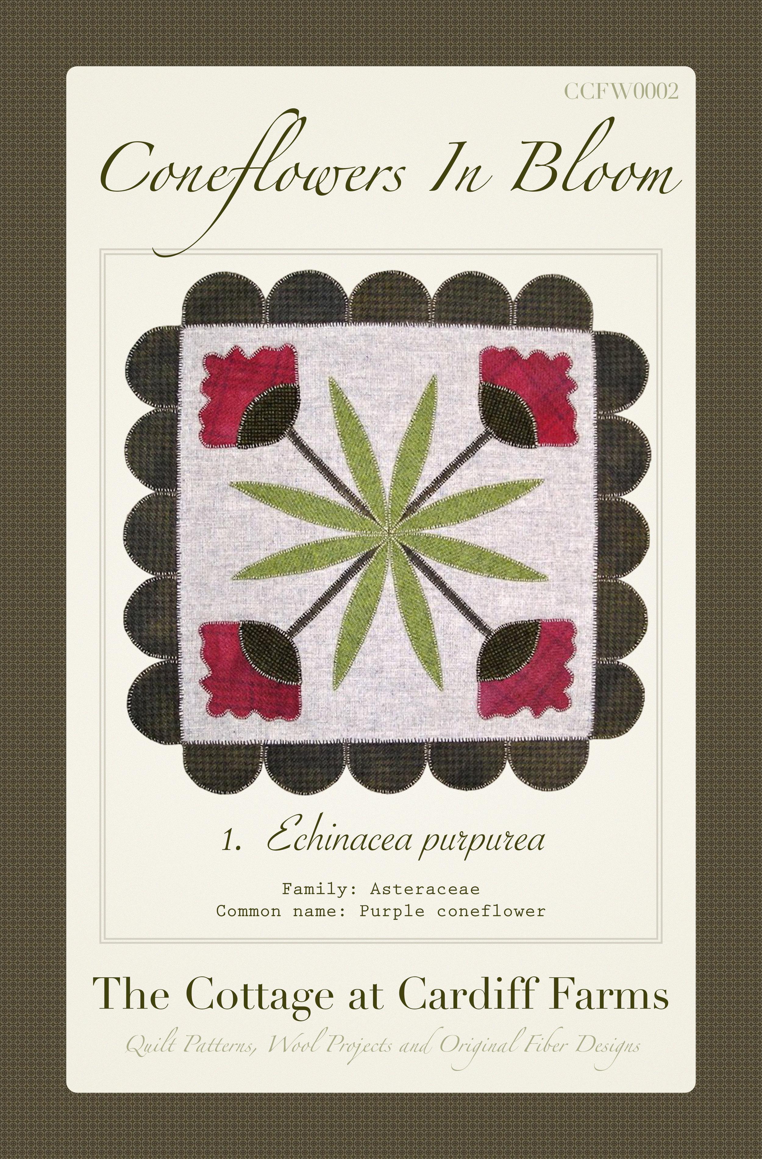 Coneflowers In Bloom Pattern Cover.jpg
