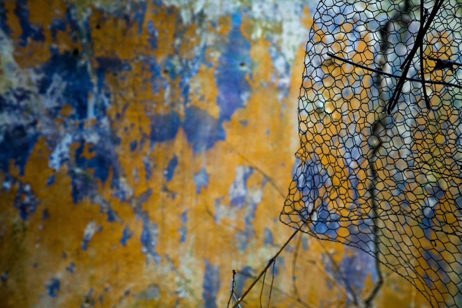 6. Derelict 36 - Steel Flowers.jpg