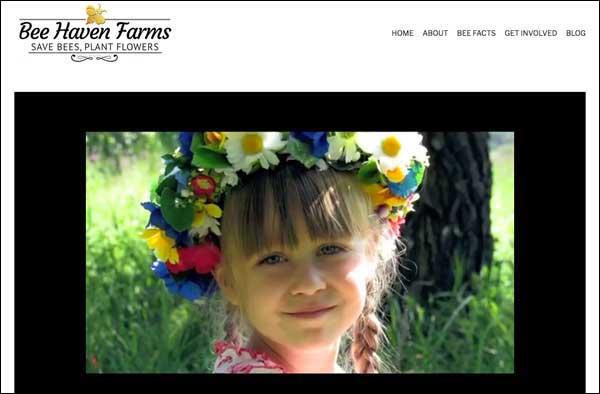 BeeHavenFarms.com  designed by  Barb's Website Design .
