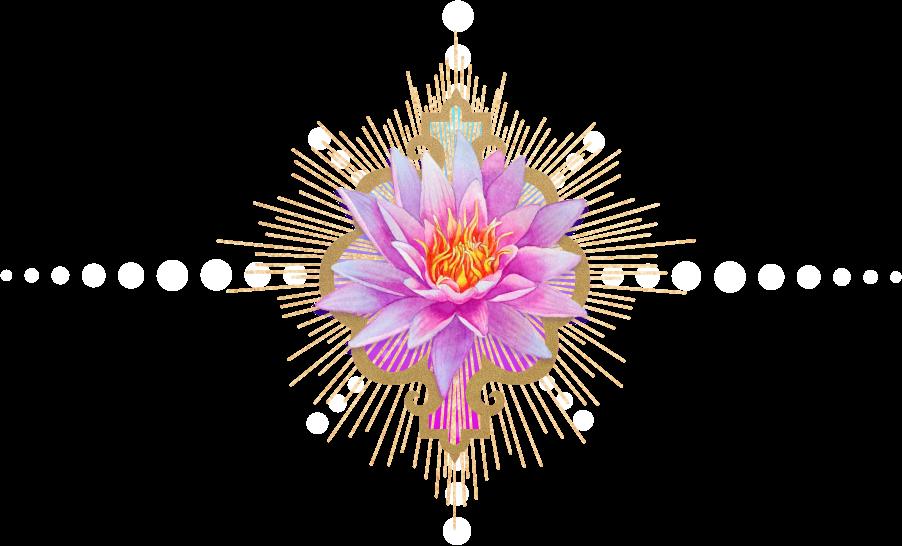 lotus divider (5).png
