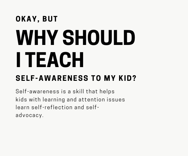 WHY SHOULD I TEACH self awareness.png