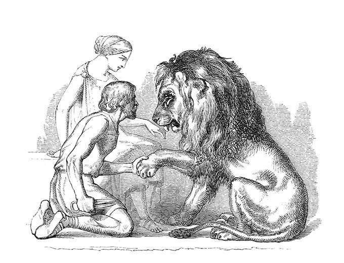 lion-in-love.jpg