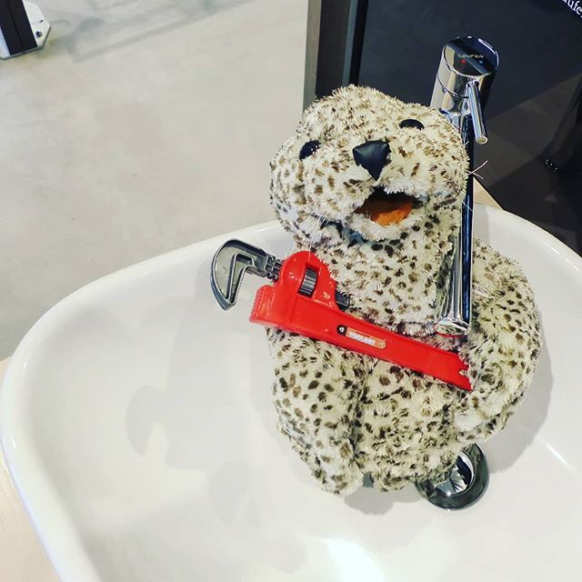 Need a new bathroom? Need a Plumber? Need advice?  Call Mr. Seal is an expert!