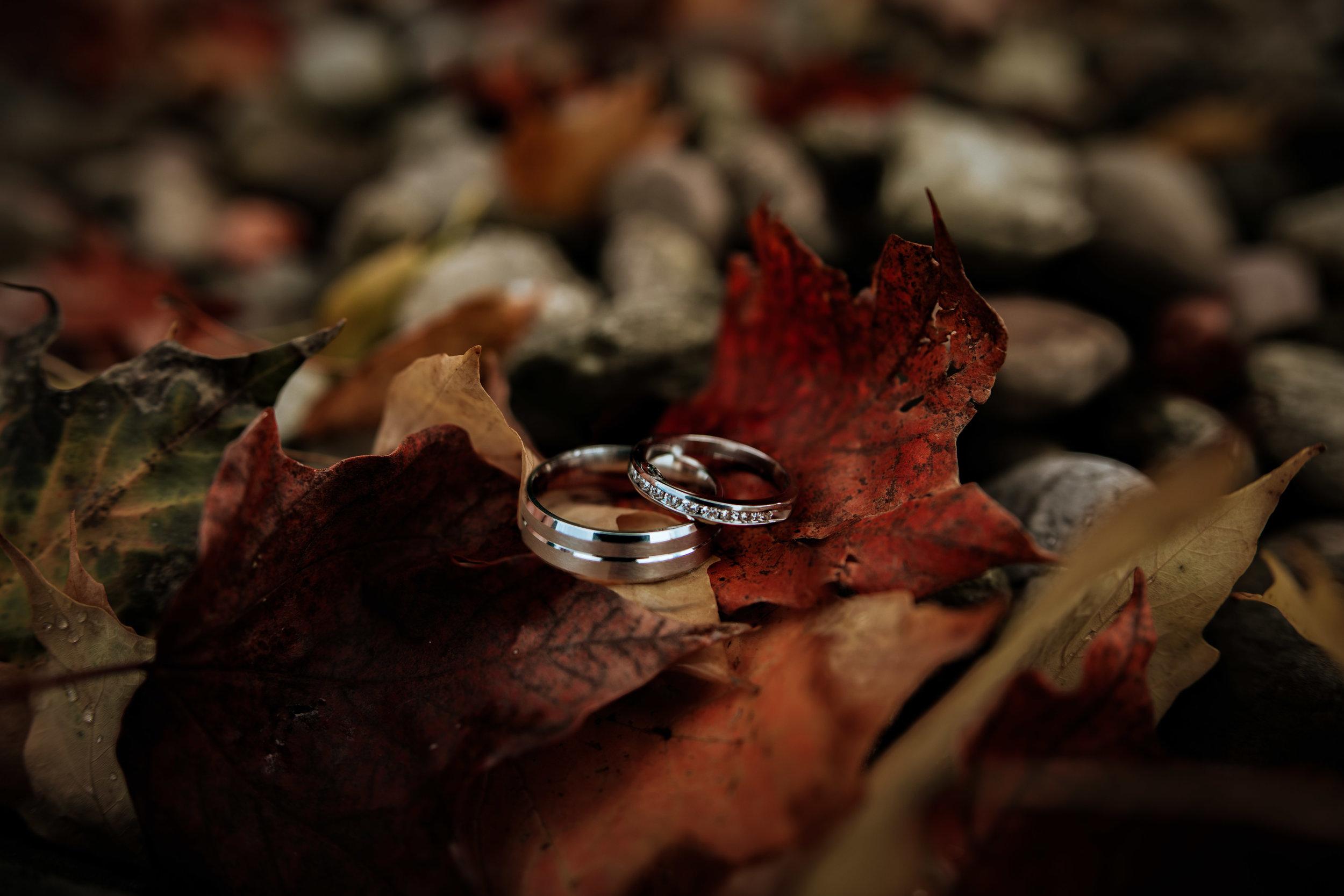 Vermont Wedding | Lorianna Weathers Photography-.jpg